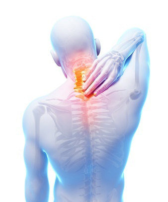 A Landmark Study on Chiropractors