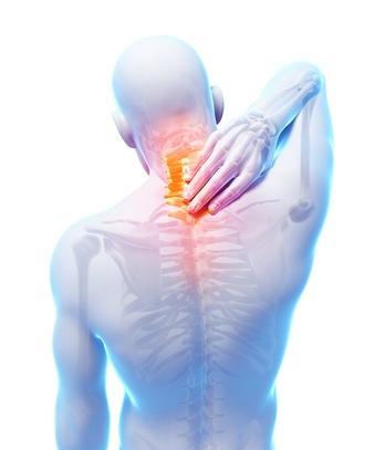 A Landmark Study on Chiropractors