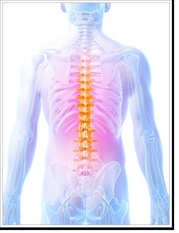 Back Pain Augusta GA